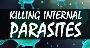 killing internal parasites logo