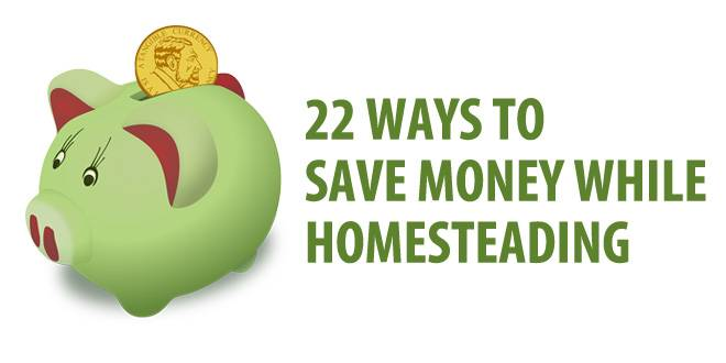 saving money homesteading featured image