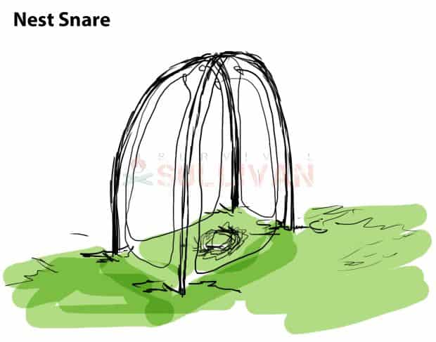 the nest snare