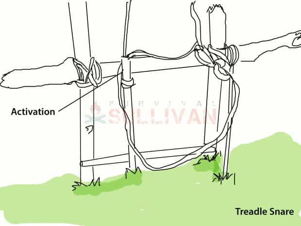 treadle snares