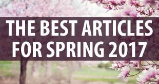 Best Articles Spring 2017 logo