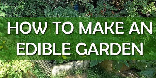 edible garden featured image