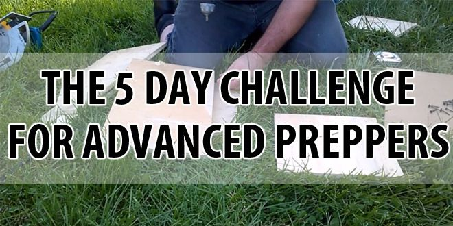 advanced 5 day challenge logo