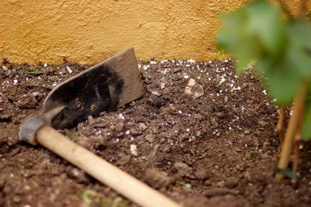 How to farm on a quarter acre survival sullivan for Soil quality definition