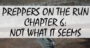 preppers on the run chapter 6 logo