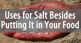 uses for salt featured image