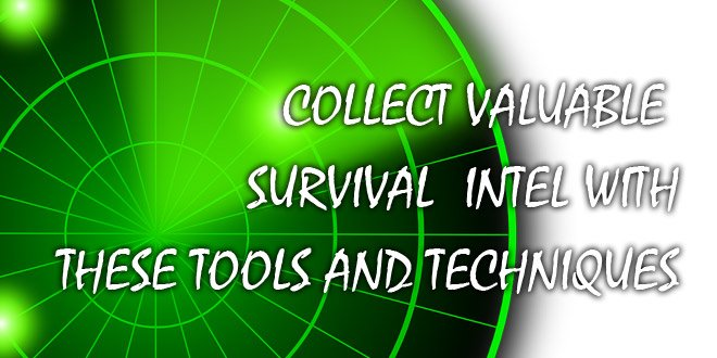 Collect Valuable Survival Intel featured
