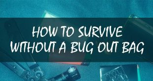survive without a bug out bag featured