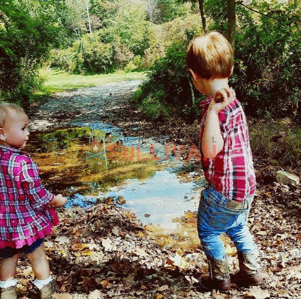 kids playing with rocks next to creek