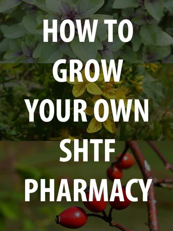 shtf pharmacy pinterest