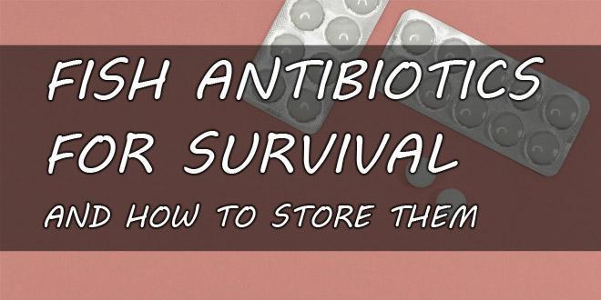 fish antibiotics featured image