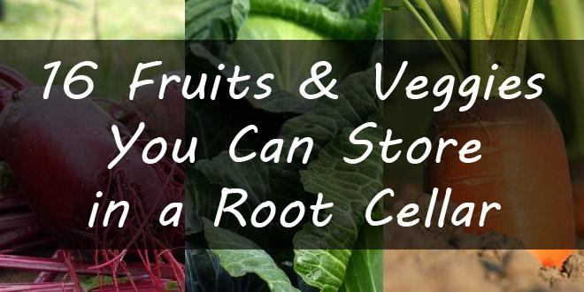 foods in root cellar featured