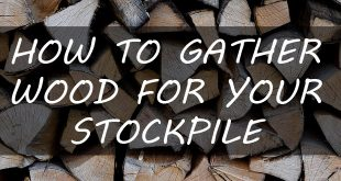 gather wood stockpile featured
