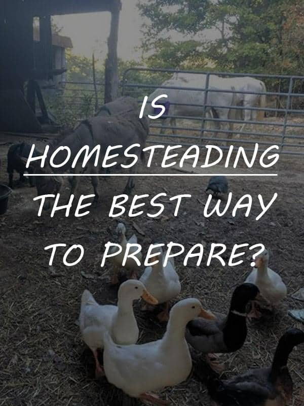 homesteading best way to prep pinterest