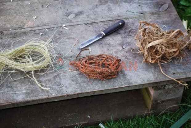 plant fibers for making cordage