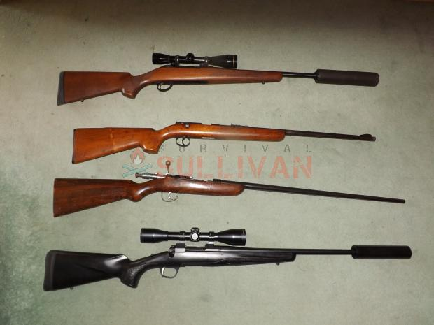 Firearms and a .410 shotgun