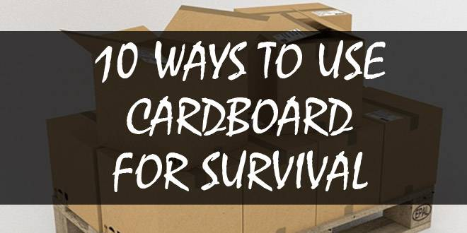 cardboard uses featured