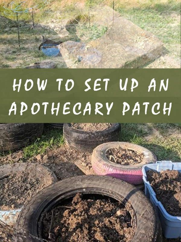 survival apothecary patch pinterest