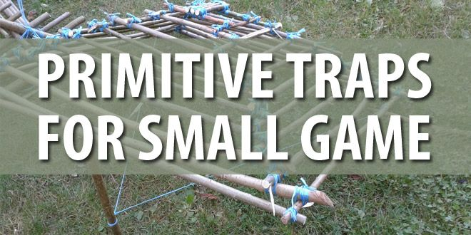 primitive traps small game featured