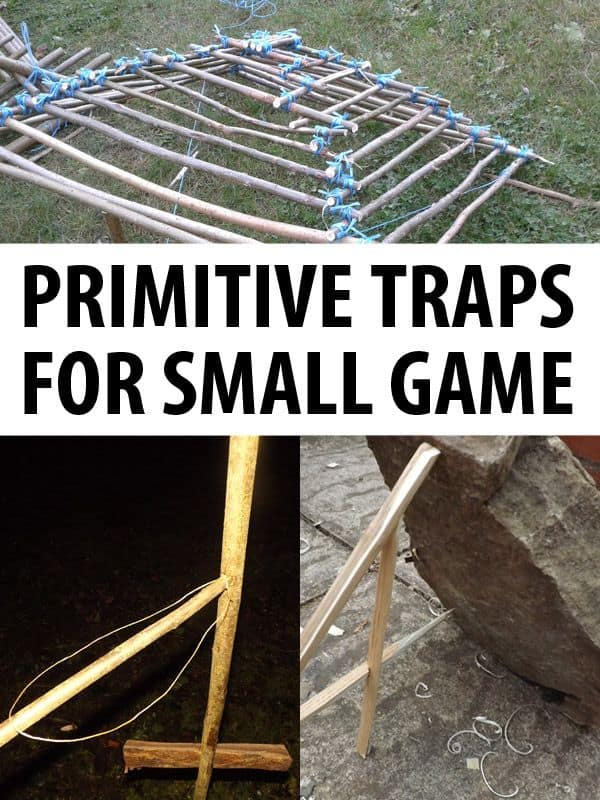 primitive traps small game pinterest
