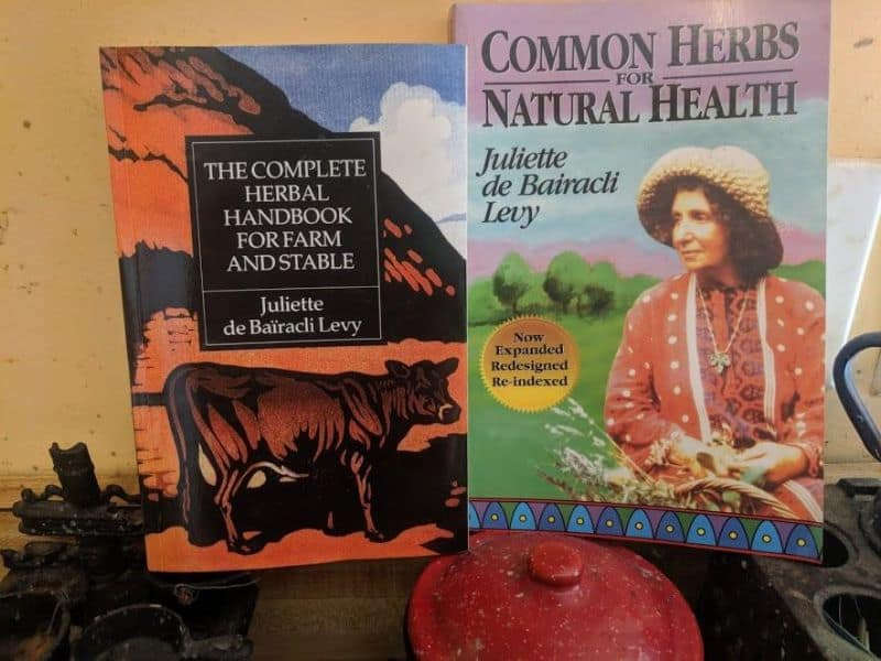 herbal remedies books