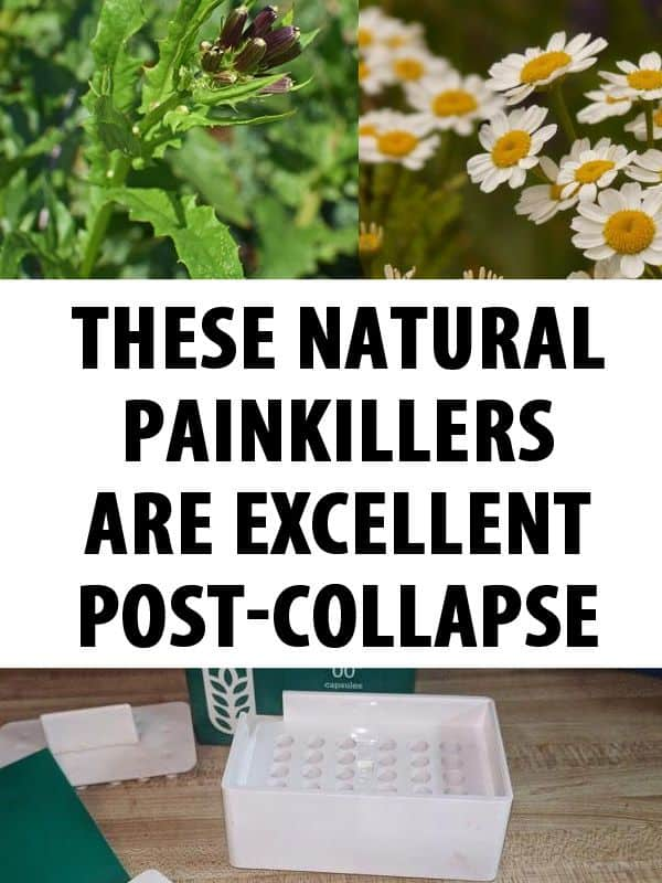 natural painkillers pinterest