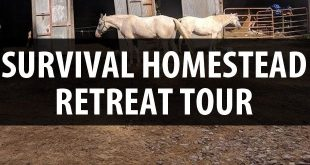 survival homestead tour featured