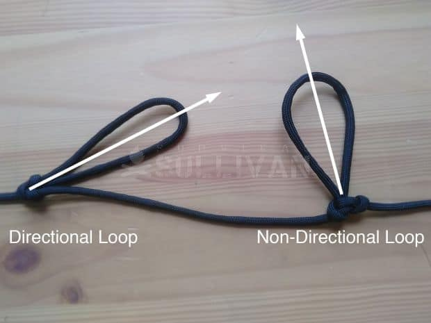 Directional and Non-directional Loops