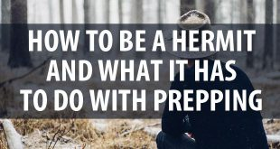 how to be a hermit pinterest