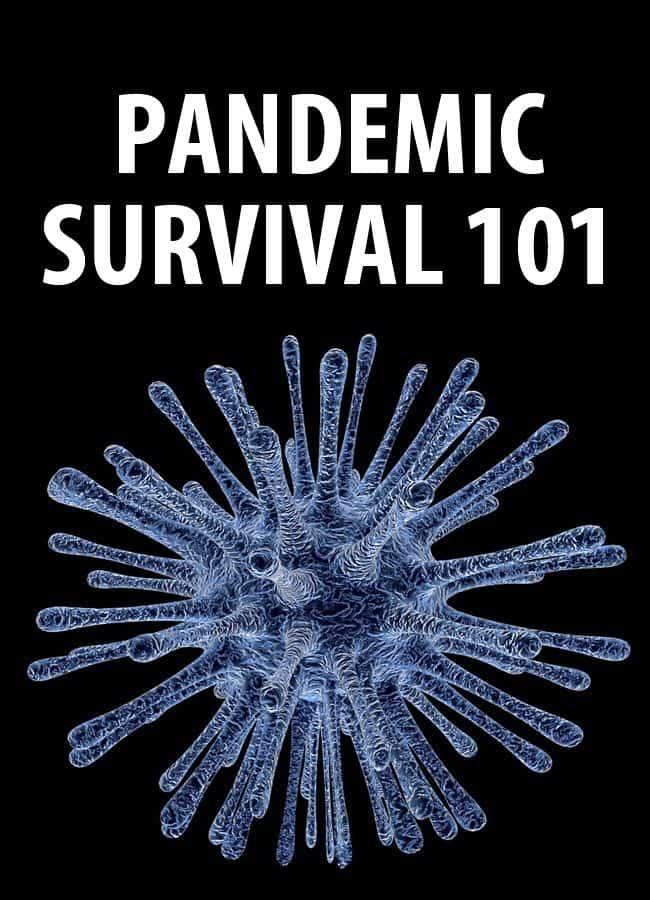 pandemic survival pinterest
