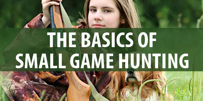 small game hunting featured
