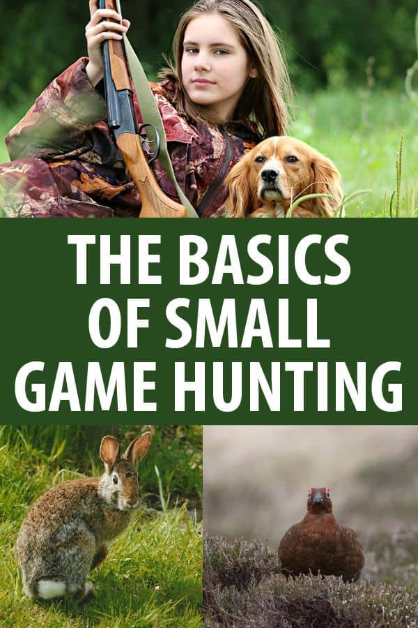 small game hunting pinterest