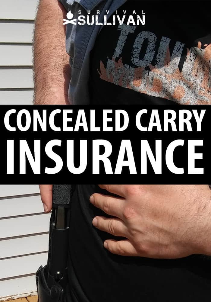 concealed carry insurance pin