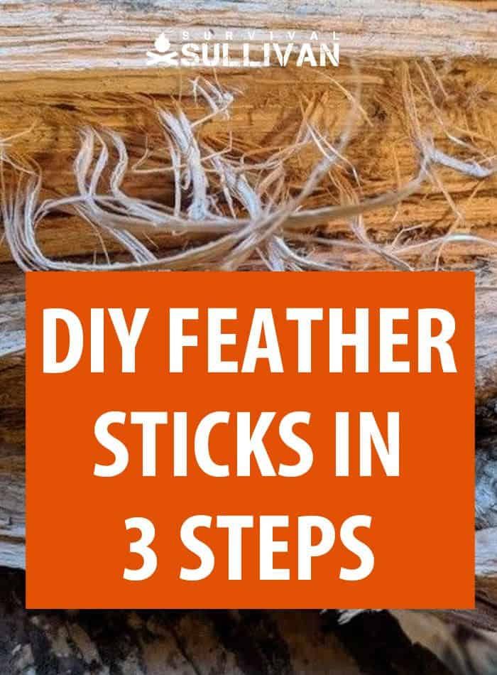 diy feather sticks pinterest