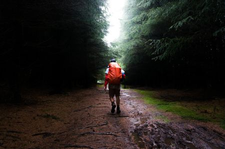 hiker in rainy forest