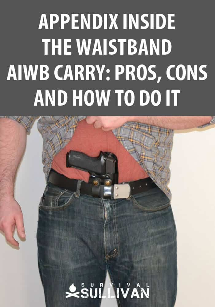 aiwb carry pinterest