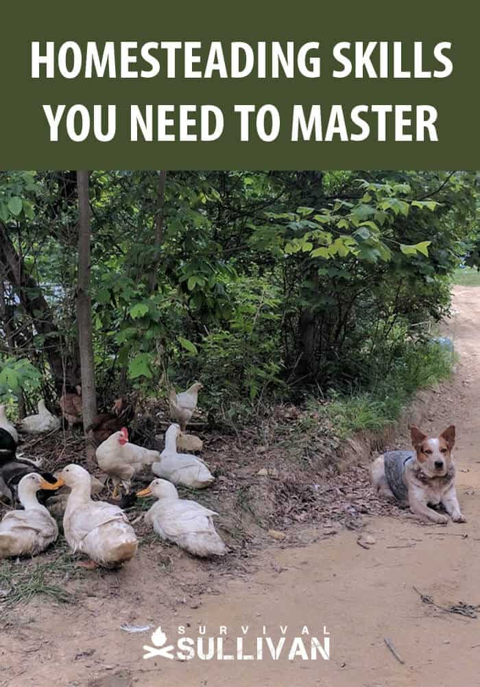 homesteading skills pinterest