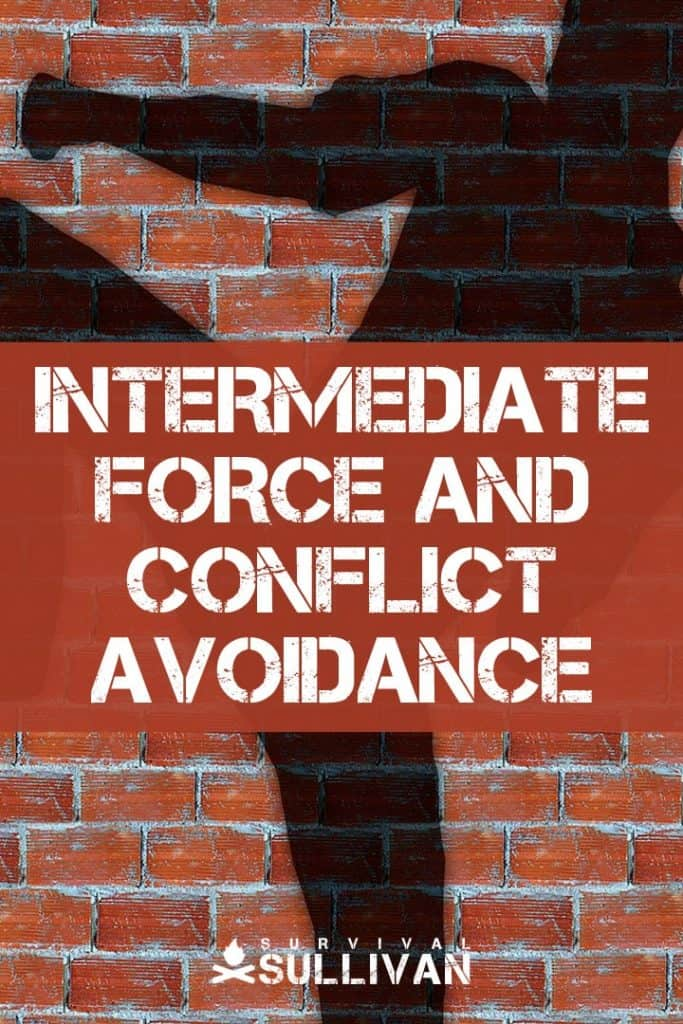 conflict avoidance pinterest image