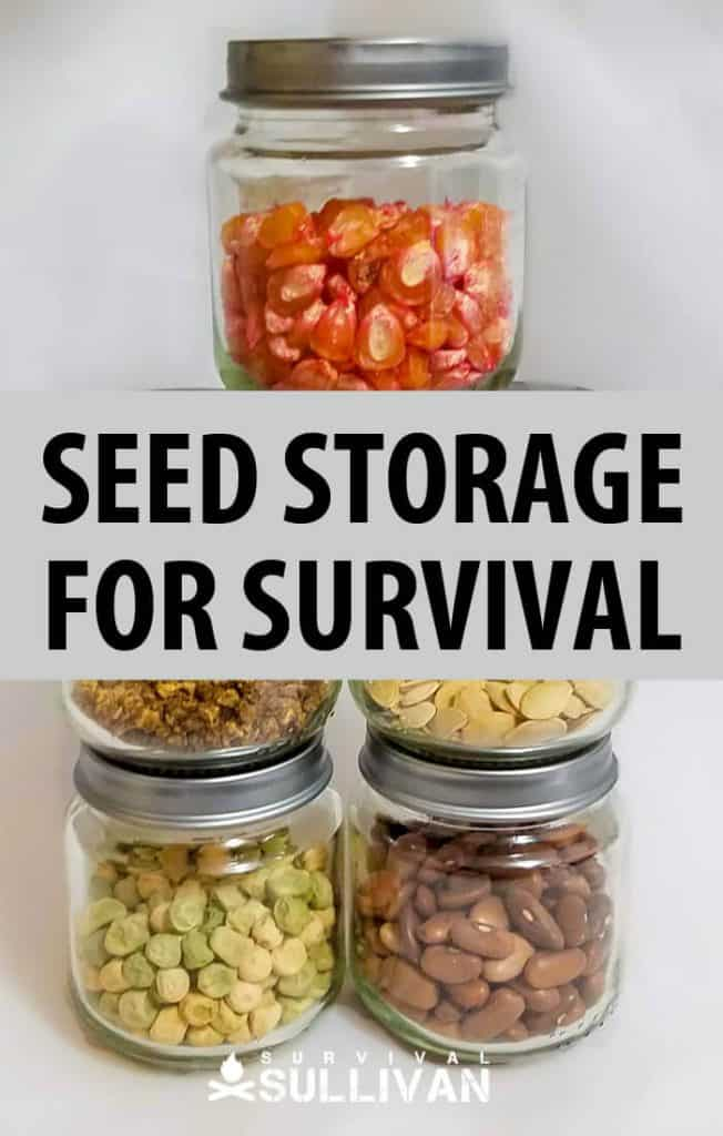 heirloom seeds for survival pinterest