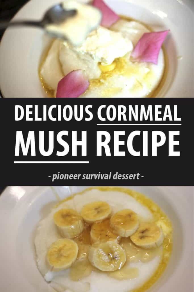 cornmeal mush pinterest image
