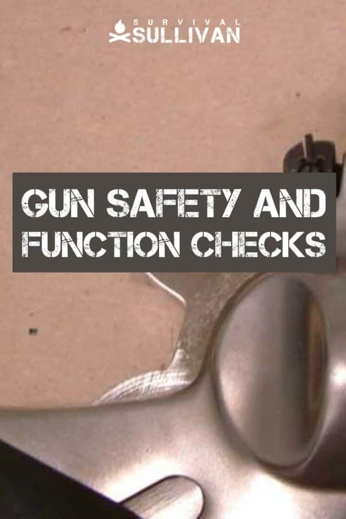 gun safety checks pinterest image