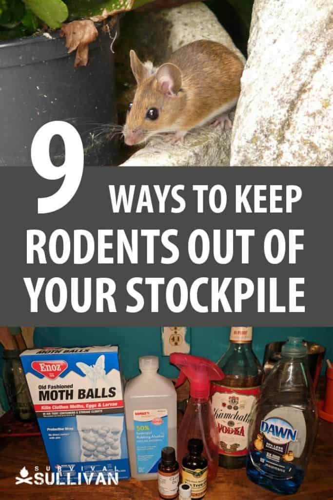keeping rodents out pinterest