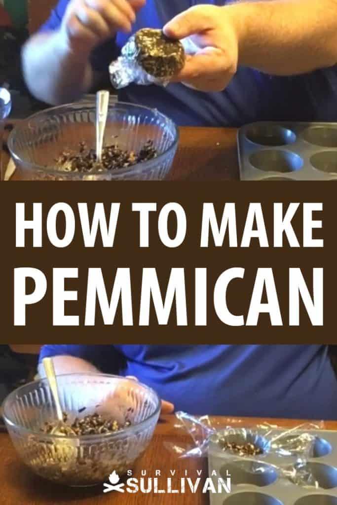 making pemmican pinterest