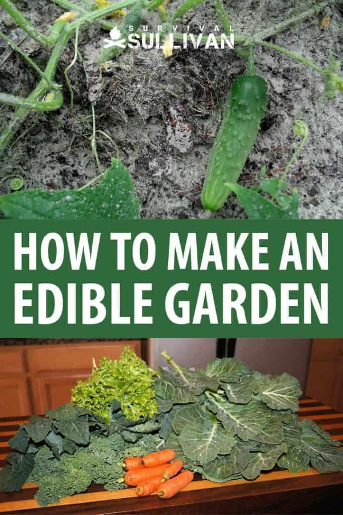 edible garden pinterest image