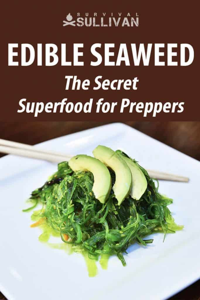 edible seaweed pinterest