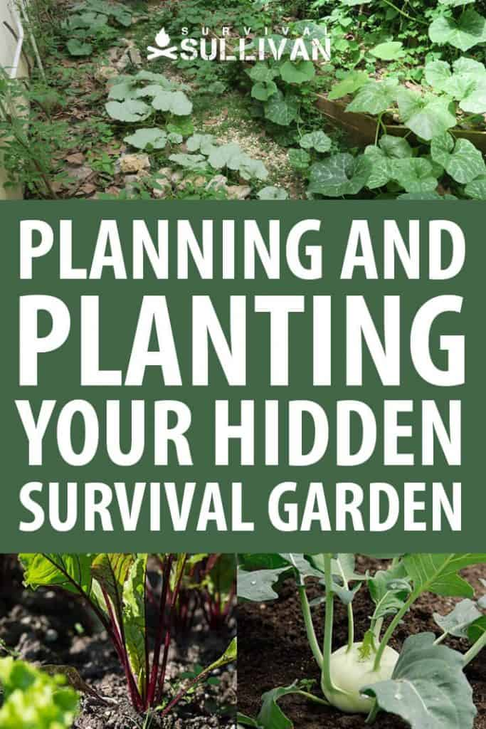 hidden survival garden pinterest image