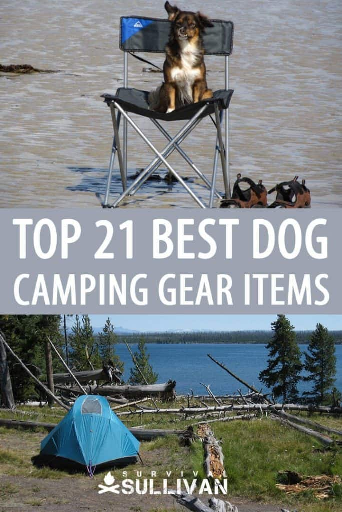 dog camping gear pinterest