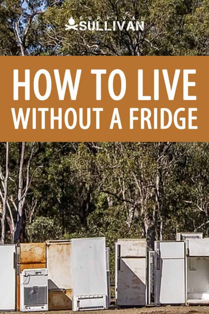 living without a fridge pinterest image