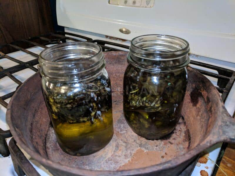 mason jars-with herbal leaves in cast iron