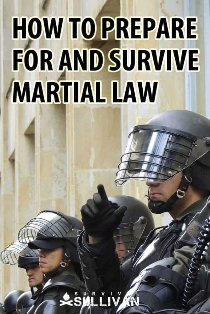 prepare and survive martial law Pinterest